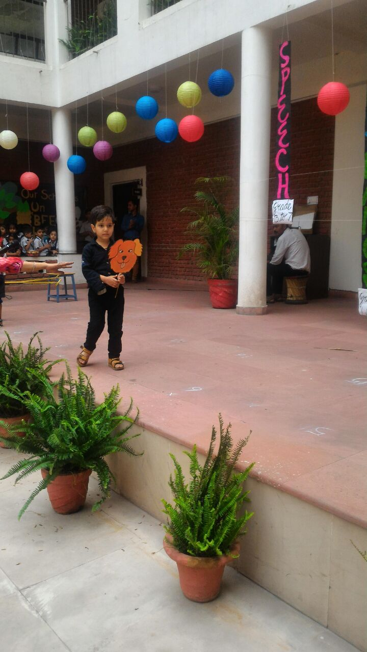 Animal Skit Kindergarten, Singing & Dance Competition Grade